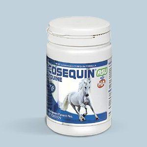 Cosequin® HA et ASU Equine Poudre concentrée