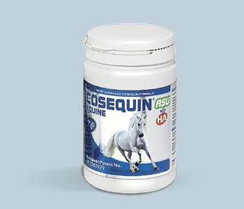 Cosequin® HA & ASU Plus Equine Pulver Konzentrat